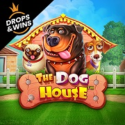 Casino-Game-The Dog House