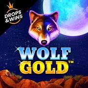Casino-Game-Wolf Gold