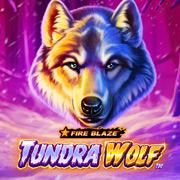 Casino-Game-Fire Blaze Golden Tundra Wolf